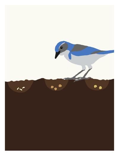 Seeds-Jorey Hurley-Art Print