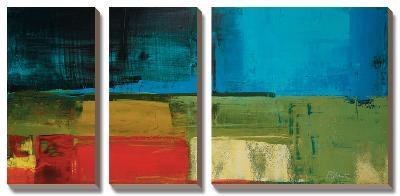Segments-Peter Colbert-Canvas Art Set