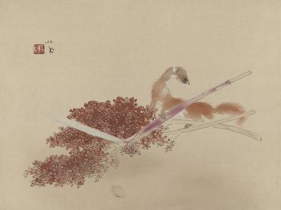 Seihô'S Masterworks: Ferret and Millet--Giclee Print
