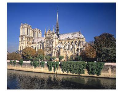 Seine River Notre Dame, Paris--Art Print