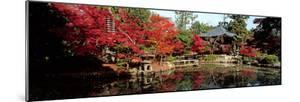 Seiryo-Ji Temple in Autumn, Ukyo-Ku, Kyoto City, Kyoto Prefecture, Japan