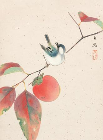Persimmon and a Japanese Sparrow by Seiyosai Shunshi