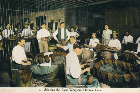 'Selecting the Cigar Wrappers, Havana, Cuba', c1910-Unknown-Photographic Print