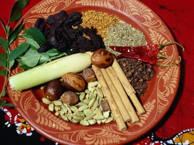 Selection of Spices for Sri Lankan Cooking, Sri Lanka-Richard Nebesky-Photographic Print