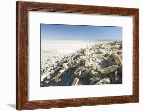Selenite Crystals on a Dried Lake Bed-Louise Murray-Framed Photographic Print