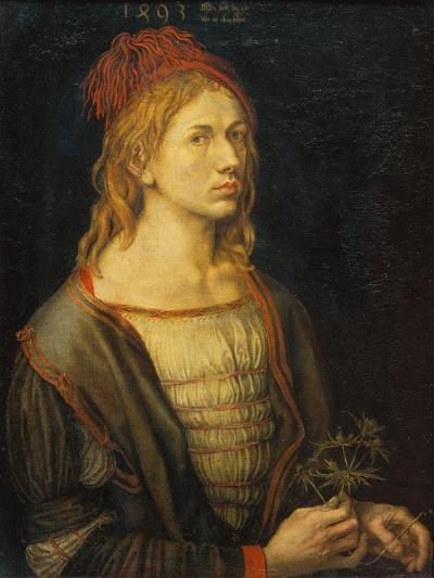 Self Portrait with a Thistle, 1493-Albrecht D?rer-Giclee Print