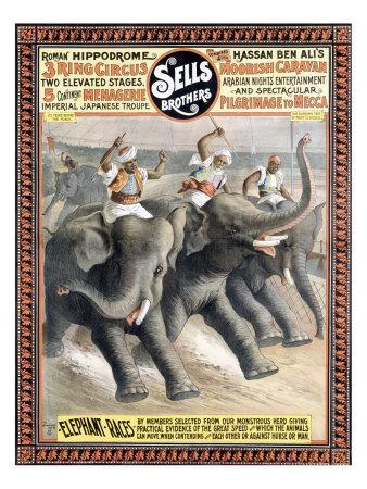 POSTER ELEPHANT RACES RING CIRCUS ARABIAN NIGHT SHOW VINTAGE REPRO FREE S//H