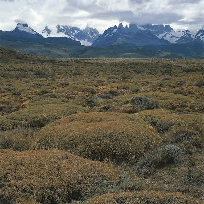 Semi-Desert Steppe with Plants of Mulinum Spinosum, the Group of Fitz Roy in the Background--Photographic Print