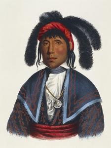 Seminoles Native American Chief