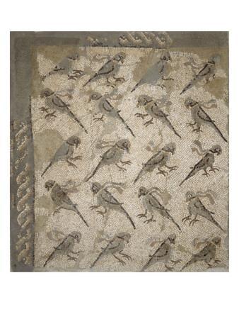 https://imgc.artprintimages.com/img/print/semis-de-perroquets-enrubannes-fragment-de-mosaique-de-pavement_u-l-pbiihb0.jpg?p=0