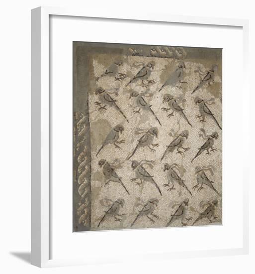 Semis de perroquets enrubannés (fragment de mosaïque de pavement)--Framed Giclee Print