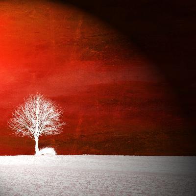 Sensation in Red-Philippe Sainte-Laudy-Premium Photographic Print