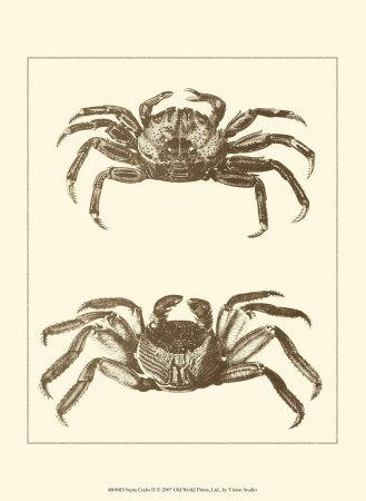 https://imgc.artprintimages.com/img/print/sepia-crabs-ii_u-l-f1povi0.jpg?p=0
