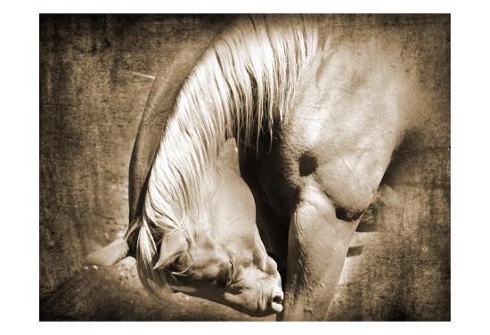 Sepia Heart Horse Left Side-Suzanne Foschino-Art Print