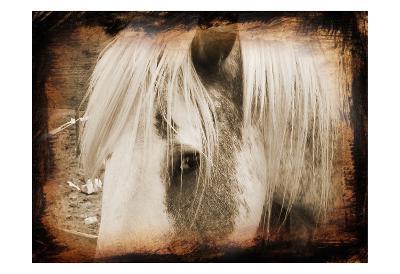 Sepia Horse-Suzanne Foschino-Art Print
