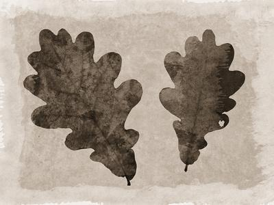 https://imgc.artprintimages.com/img/print/sepia-oak-leaves_u-l-q1a6nks0.jpg?p=0
