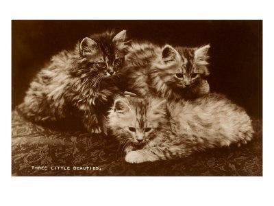 Sepia Photograph of Kittens--Art Print
