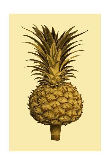 Sepia Pineapple II--Art Print