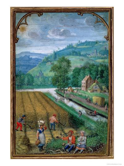 September: Harvesting, Ploughing and Sowing, from a Book of Hours, c.1540-Simon Bening-Giclee Print