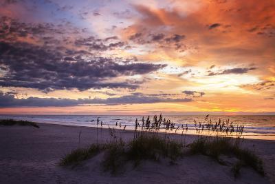 September Sunrise II-Alan Hausenflock-Photographic Print
