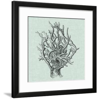 Serene Coral II-Vision Studio-Framed Art Print