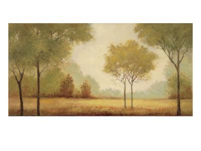 Serene Panorama-Jill Schultz McGannon-Art Print