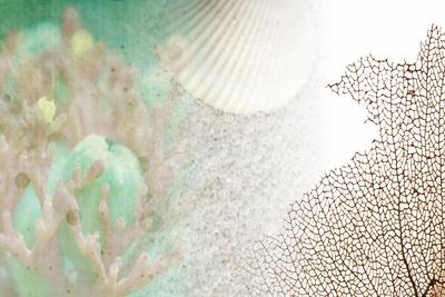 https://imgc.artprintimages.com/img/print/serene-photo-collage-ii_u-l-q12zxnl0.jpg?p=0