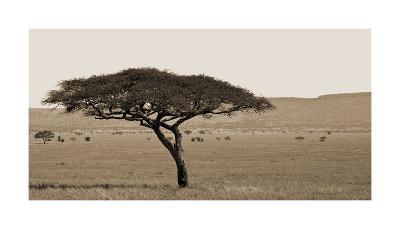 Serengeti Horizons I-Jeff/Boyce Maihara/Watt-Giclee Print