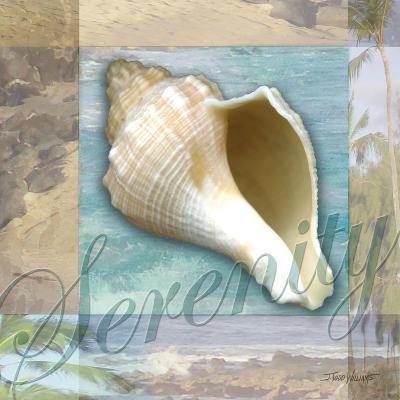 Serenity Shell-Todd Williams-Art Print