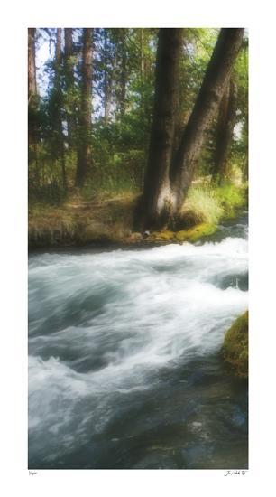 Serenity Stream I-Joy Doherty-Giclee Print