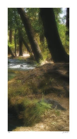Serenity Stream III-Joy Doherty-Giclee Print