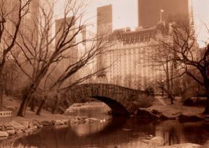 Reflections, Central Park by Sergei Beliakov