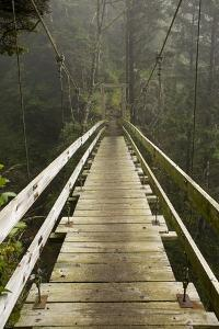 A Modern Hanging Bridge Crosses Above the Chasm of Tsocowis Creek by Sergio Ballivian