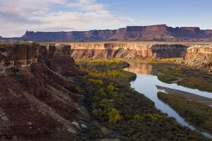 The Green River as Seen from the White Rim Trail in Canyonlands National Park, Utah by Sergio Ballivian