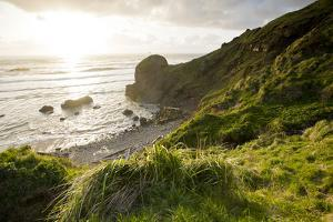 The Rugged Coast of Oregon at Ecola State Park by Sergio Ballivian