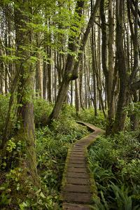 West Coast Trail Along the Pacific Northwest by Sergio Ballivian