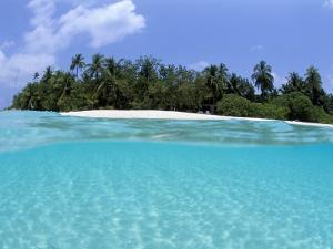 Asdu Island, North Male Atoll, Maldives, Indian Ocean by Sergio Pitamitz