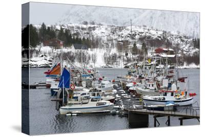 Austnes Fjord, Lofoten Islands, Arctic, Norway, Scandinavia