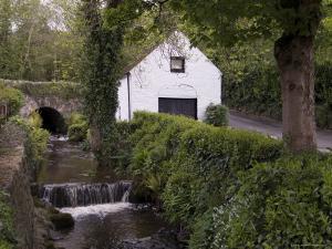 Avoca, County Wicklow, Leinster, Republic of Ireland (Eire) by Sergio Pitamitz