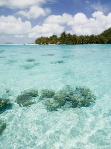 Bora-Bora, Leeward Group, Society Islands, French Polynesia Islands by Sergio Pitamitz