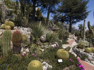 Botanic Garden (Jardin Exotique), Eze Village, Alpes Maritimes, Provence, Cote d'Azur, France by Sergio Pitamitz
