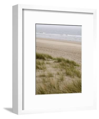 Curracloe Beach, County Wexford, Leinster, Republic of Ireland (Eire)