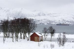 Fornes, Vesteralen Islands, Arctic, Norway, Scandinavia by Sergio Pitamitz