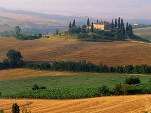 Italy, Tuscany, Val d'Orcia, fields at sunrise by Sergio Pitamitz