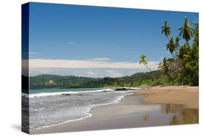 Osa Peninsula, Costa Rica.