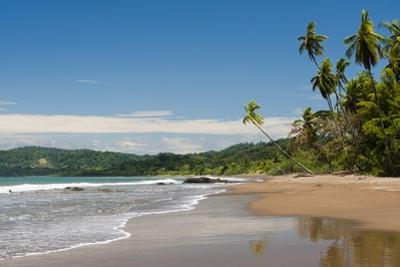Osa Peninsula, Costa Rica. by Sergio Pitamitz
