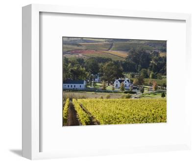 Zorgvliet Wine Estate, Stellenbosch, Cape Province, South Africa, Africa