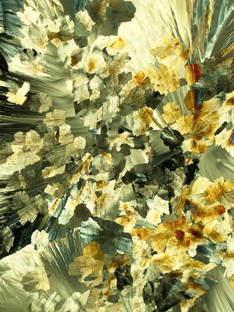 https://imgc.artprintimages.com/img/print/serotonin-crystals-light-micrograph_u-l-pzj9b00.jpg?p=0