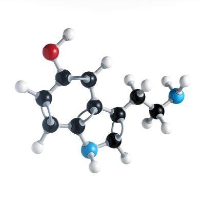 Serotonin Neurotransmitter Molecule-Science Photo Library-Photographic Print