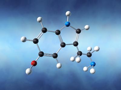 Serotonin Neurotransmitter Molecule-David Mack-Photographic Print